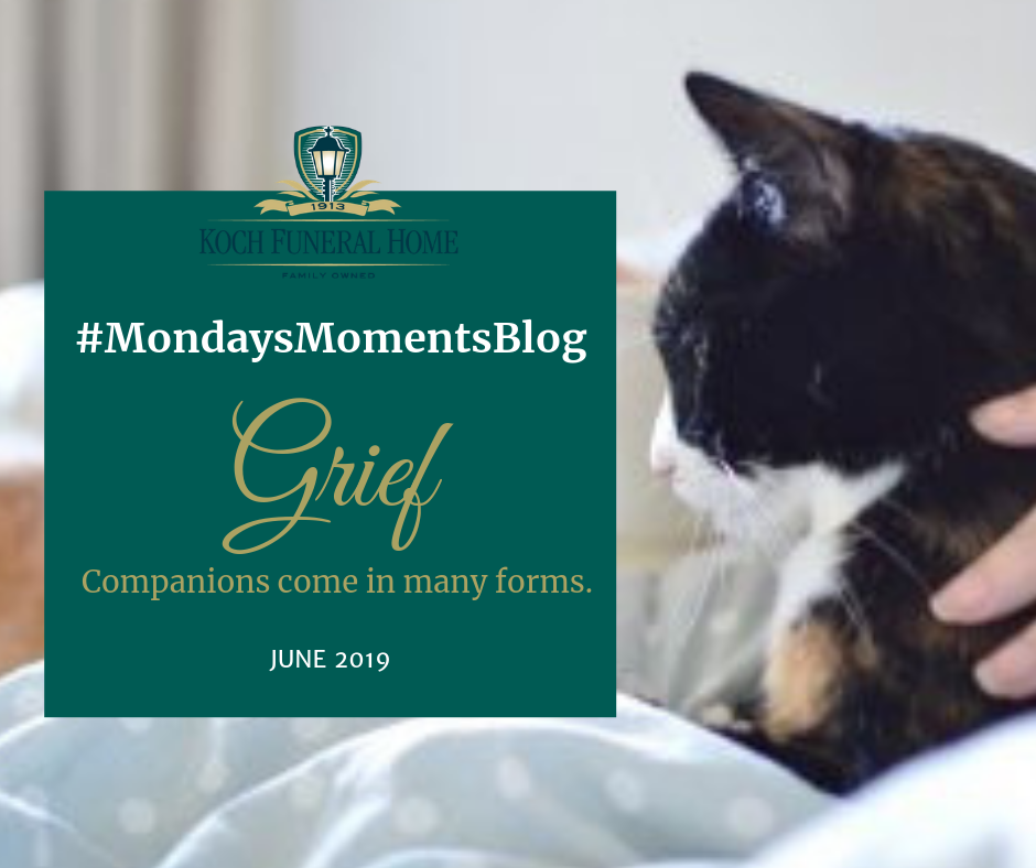 2019 - FB - June - MM - Grief. Companions come in many forms
