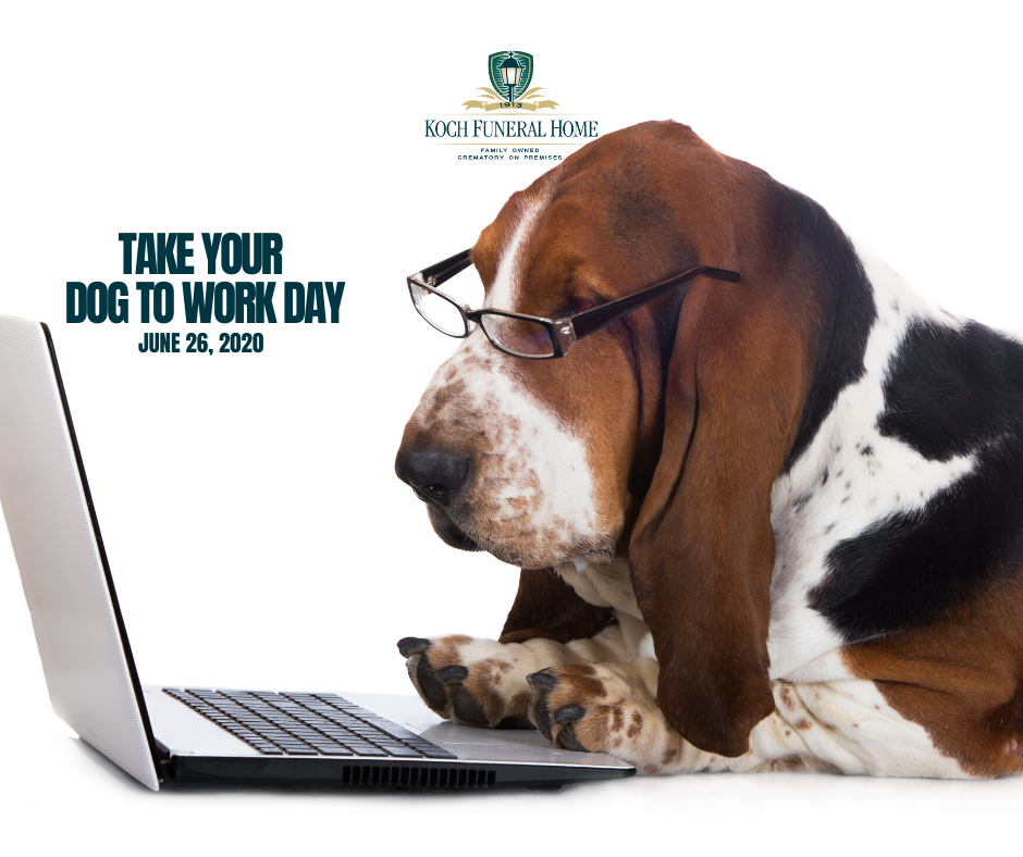 2020 - FB - June - Take Your Dog to Work Day