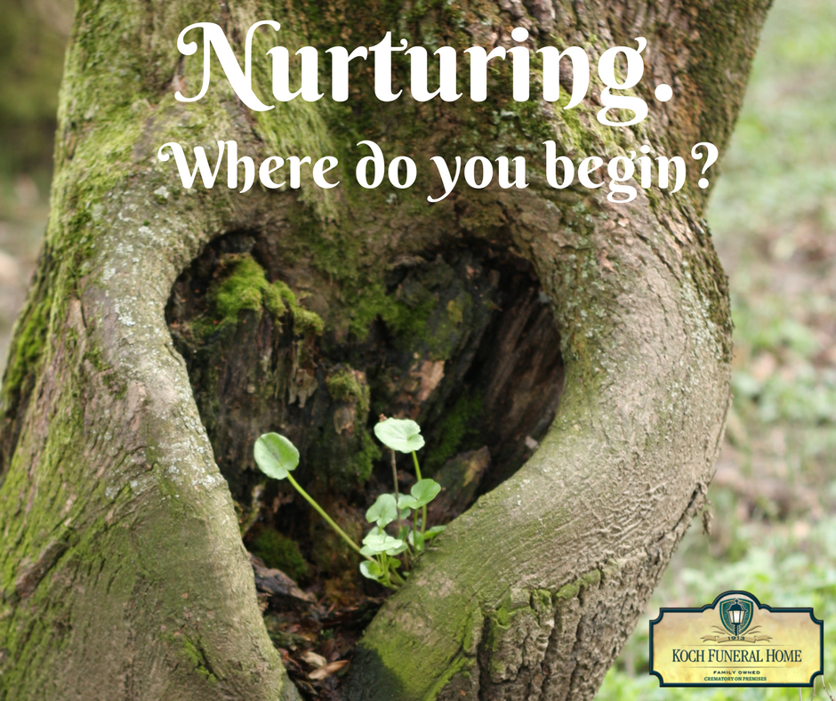 2018 - Event Post - Nurturing. Where do you begin.